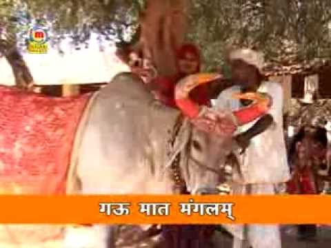 Prakash Mali Bhajan Gau Mata Part 2 video