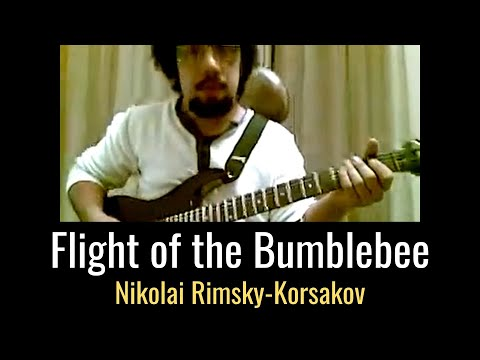 Nader Noroozian (nadi)- Flight Of The Bumble Bee.mp4 video