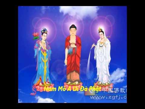Cộng Tu Niệm Phật (Theo Kiểu Tịnh Tông Học Hội, Có Địa Chung)