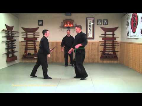 Bujinkan - Knife Disarms - Tanto - Ninja Training Free Video Blog Image 1