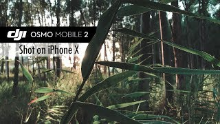 iPhone X + DJI Osmo Mobile 2 Cinematic Footage