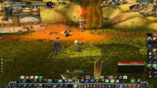 World of warcraft poradnik dla Hunterów: DPS, Spec, Rotacja
