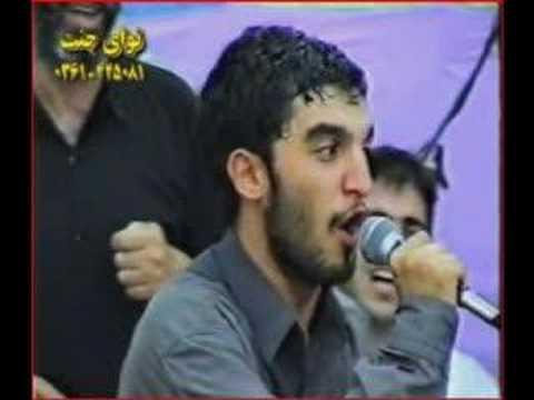 seyed javad zaker & alimi-سید ذاکر و علیمی