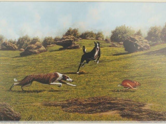 caza de liebre con galgos de  curico sagda familia la isla 7 region