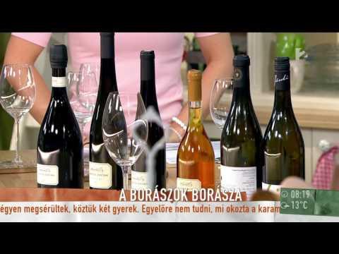 Világszínvonalú munkát végeznek a magyar borászok - tv2.hu/mokka