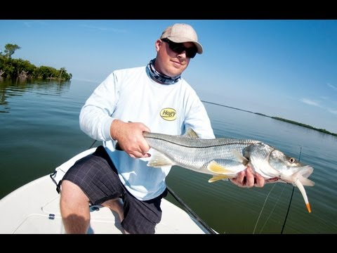 Pine Island Sound Snook and Redfish