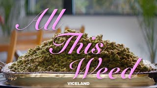 ALL THIS WEED: A VICE Labs Presentation