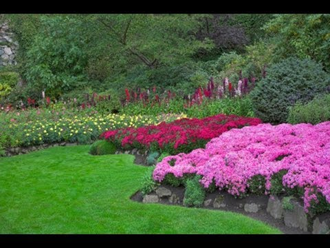 Wie Sie Ihren Garten Pflegen Können