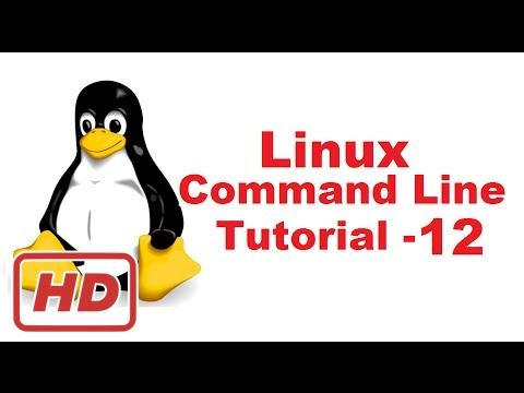 [Linux Command Line Tutorial] Linux Command Line Tutorial For Beginners 12 -  nano command