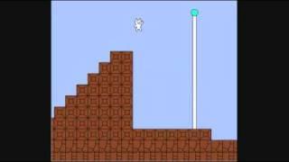 World's Fastest Cat Mario Speed Run
