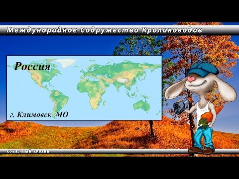 Кролики уличного содержания Моск. обл.