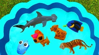 #learncolors with Sea Animals For Kids - Blue Pool For Children - Animal Toys, Toys For Kids