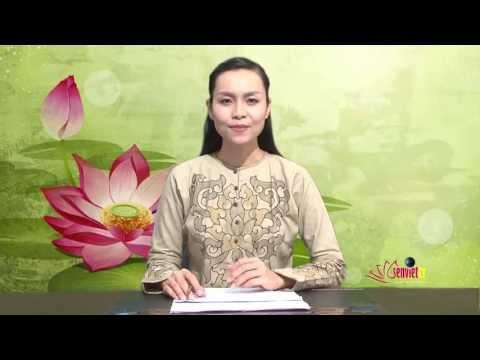 Bản Tin Tổng hợp Phật Đản 2557