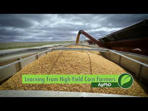 Learning From High-Yield Corn Farmers #981 (Air Date 1-22-17)