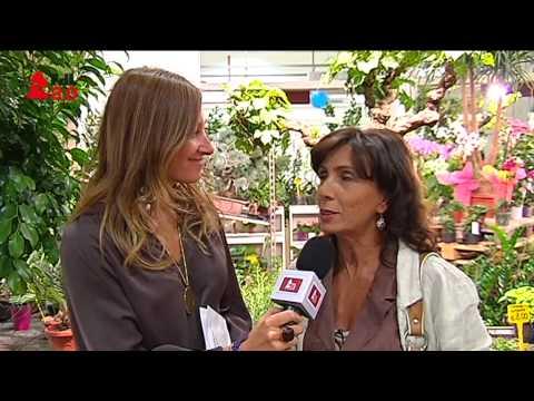 DIRETTA WEB DAL SALONE DELL'ARTIGIANATO (18/09/2013, ORE 19.00)