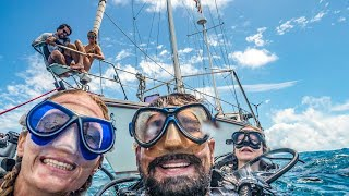 Ocean Conservation, Turtles and SHIP WRECKS! Sailing Vessel Delos Ep.185