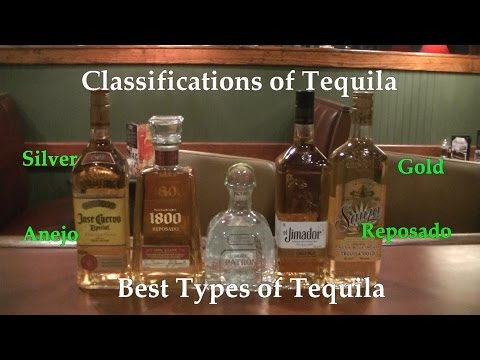 Download Lagu  Classifications of Tequila  Best Types of Tequila  Difference Between Tequilas Mp3 Free