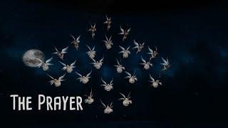 The Prayer - SLDC— Holiday Dreams