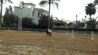 Hatim horse back riding