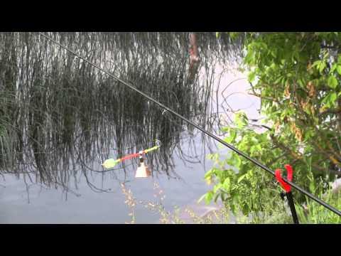 летняя рыбалка на сенеже