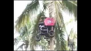Download গাছে উঠার গাড়ি  (the care on top of the tree) 3Gp Mp4