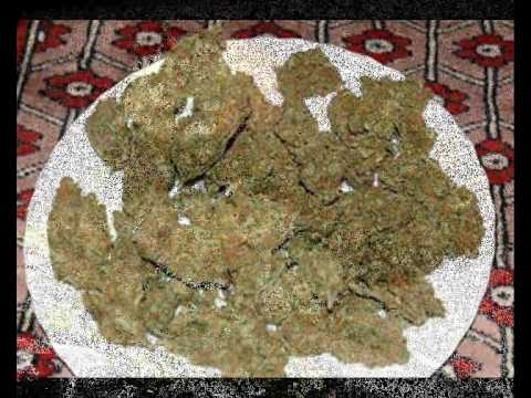 Top Cat - Ganja Smoker (best Trick Riddim) video