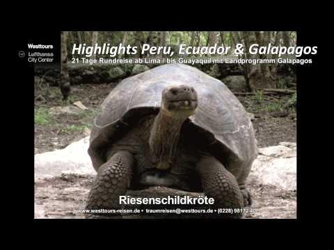 Höhepunkte Peru Ecuador Galapagos