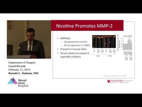 AAA Disease: Pathogenesis and Progression