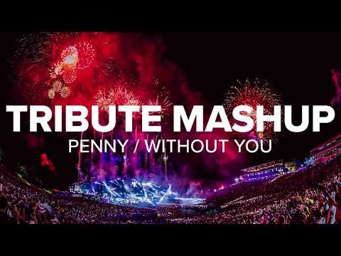 Dimitri Vangelis & Wyman vs. Avicii - Penny / Without You (Tribute Mashup)