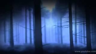 কবরের আযাব কত কঠিন- Bangla Islamic song