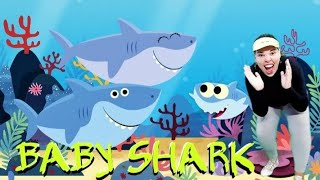 BABY SHARK SONG AND DANCE KIDS| Animal Song | Simbora Brincar | A DANÇA DO TUBARÃO