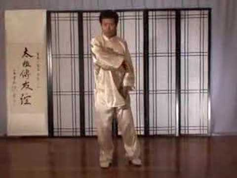 Tai Chi Power Striking Taiji Fajin Training Image 1