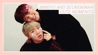 ?Why you should ship: GYUBOO (Seungkwan x Mingyu)