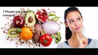 7 Plantas medicinales que bajan el colesterol.