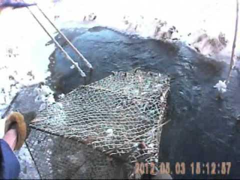 изготовление мордушки для ловли рыбы фото