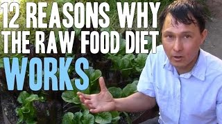 12 Reasons Why the Raw Food Diet Works