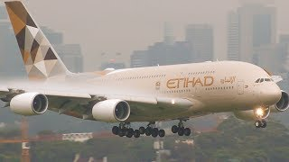 OUT of the FOG Landings at Sydney | A380 B747 A330 B777 | Sydney Airport Plane Spotting