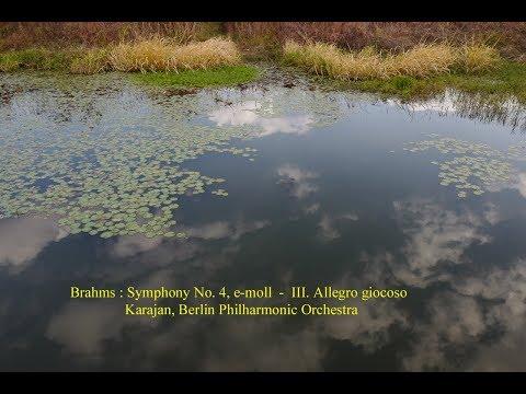 Brahms  : Symphony No. 4  -  III. Allegro giocoso