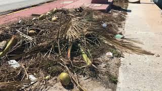 Así quedó Miami Beach tras el paso de Irma/Miami Beach Hurricane Irma Aftermath