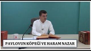 Hasan Yenidere - Pavlovun Köpeği ve Haram Nazar