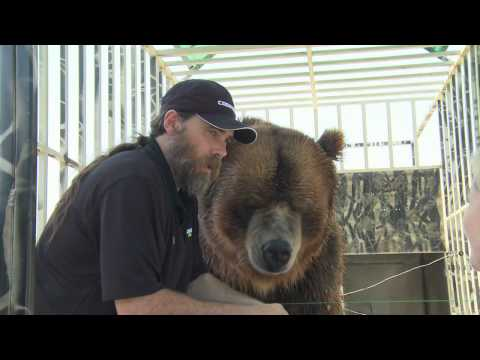 Celebrity Grizzly Brody The Bear Says Thanks To Nutramax Laboratories