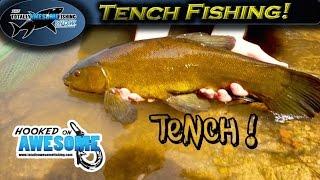 Fishing for Tench - Epic action!   TAFishing