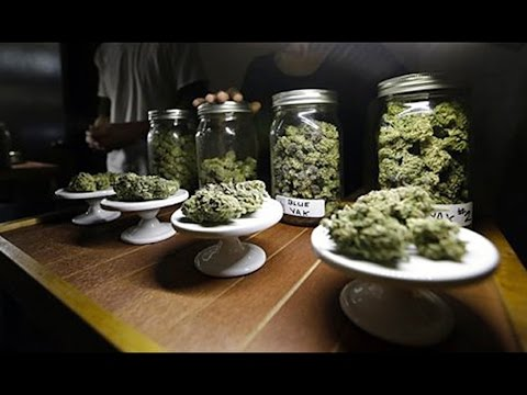 Recreational Vs Medicinal Marijuana. Washington Regulation Debate