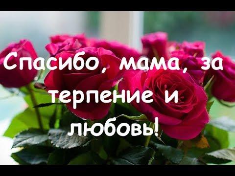 С днем рождения мама спасибо тебе за терпение
