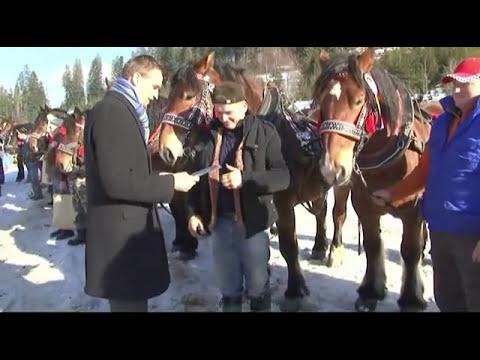 Karnawał furmański 2011 Złatna cz 2