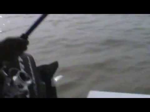 New Orleans Fishing Chronicles 6b