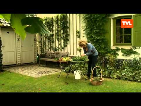 Tuin hoe maak ik een herfststuk met materiaal uit de tuin youtube - Hoe amenager tuin ...