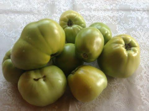 87.Как ускорить созревание и спасти урожай помидор от фитофторы
