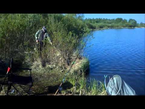рыбалка в выгоничах
