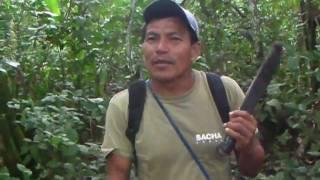 Conte Equatorien.MP4